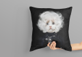 Free Pillow-Mockup.png